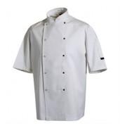 DennysChef's jacket short sleeve press stud (DC08CS)