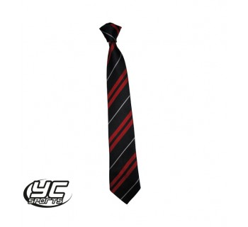 Cardiff High School Tie