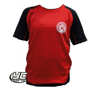 Cardiff High School PE T-shirt (Fitted)