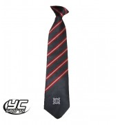 Cantonian High School Tie Lower (Years 7,8,9)