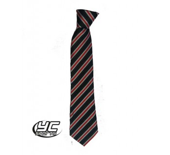 Cardiff High School Tie