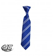 Glyncoed Primary School Tie ROYAL/WHITE 45