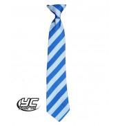 Llanishen High School Tie Royal/White