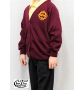 St David's Primary School Cardigan