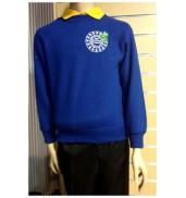 Ysgol Gymraeg Treganna blue Sweatshirt