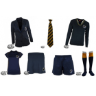 St Teilo's High School Girls Style Essential Pack