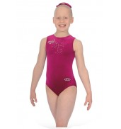 The Zone Butterfly Leotard (Cerise)